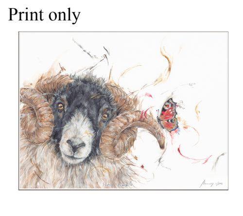 hey ewe print only