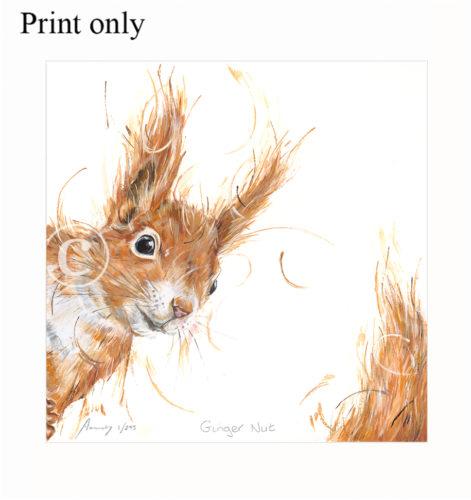 ginger nut print only